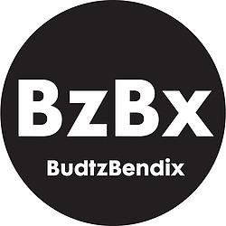 Se fler produkter från BUDTZBENDIX